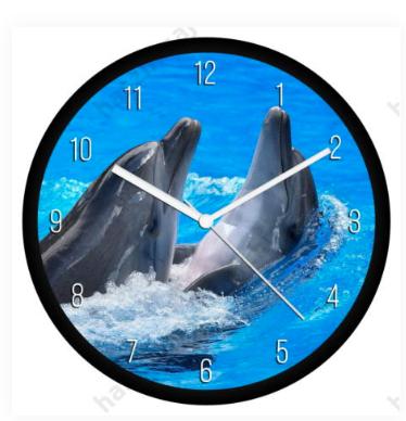 delfines falióra